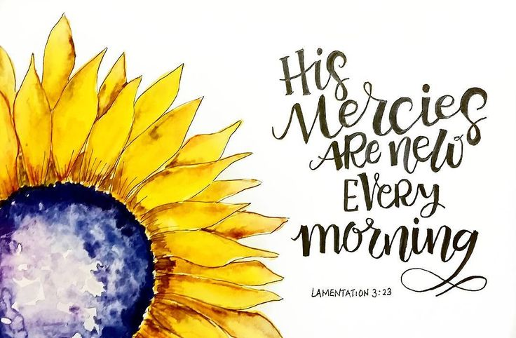 """Lamentations 3:23 """"They are new every morning; great is your faithfulness."""" What a blessed assurance to know that God has """"new mercies""""  for us every new morning. We can trust and believe in His Word for it says that His mercy endures forever.  Surely He has a 'new mercy' for you and me every single day  and a plan for our life to experience His presence and faithfulness. Thank you Lord Jesus!  #thedailytype #bibleverse #dailydevotional #scripture #goodnewsfeed #godsword #godisfaithful…"""