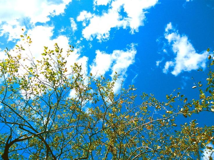 sky by ~rayzkodak
