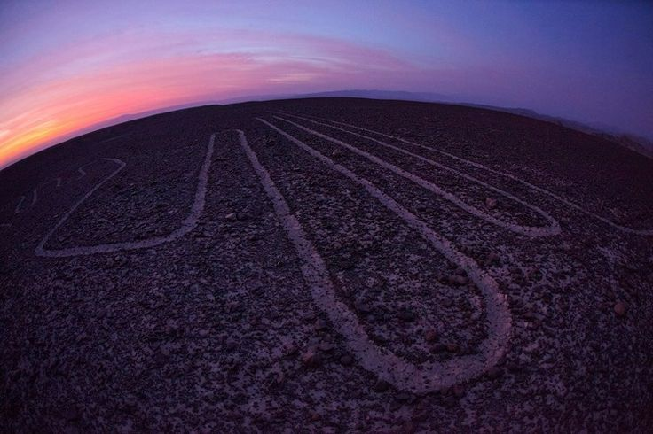 Nazca lines, the Colibri at dusk