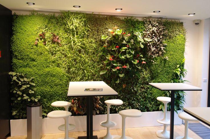 Afbeeldingsresultaat voor groene muur planten