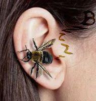 Evoluindo Sempre: Zumbidos no ouvido - Culpa da glândula pineal