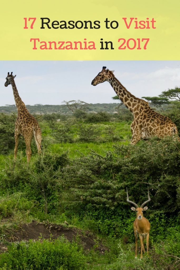 17 Reasons to Visit Tanzania in 2017