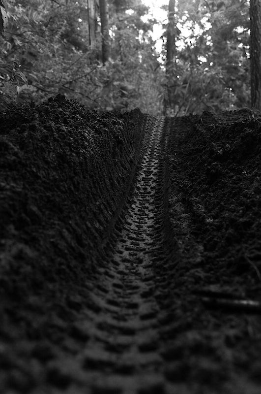tire track. México Trail, Mexico City. José Duch Photography.  Kudos if you can identify the tire. http://WhatIsTheBestMountainBike.com
