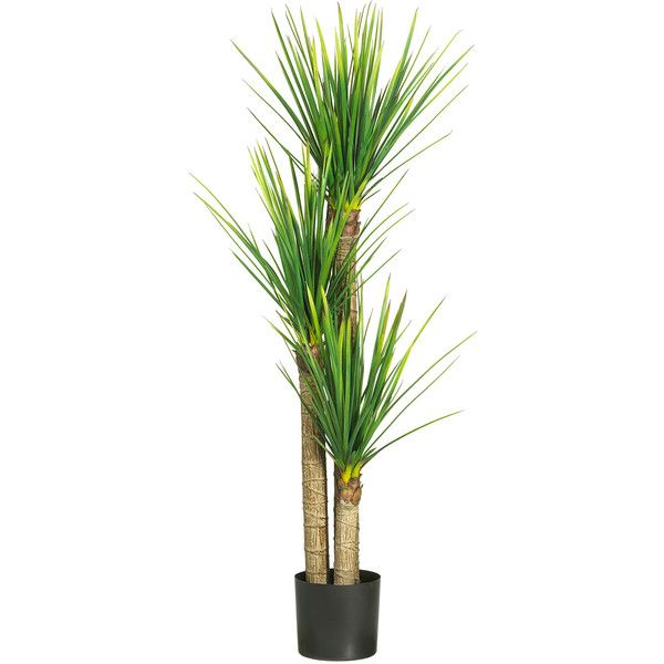 """Nearly Natural 58.5"""" Yucca Silk Tree (725 BRL) ❤ liked on Polyvore featuring home, home decor, floral decor, plants, flowers, fillers, nature, green, artificial silk trees and faux tree"""