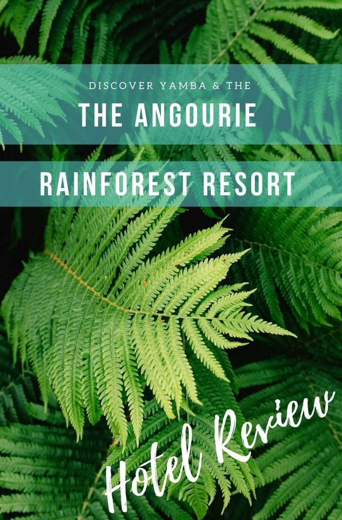 Wrapped within 600 hectares of rainforest Angourie #Rainforest Resort is fast becoming a hotspot for travellers to northern NSW. #Australia #hotel