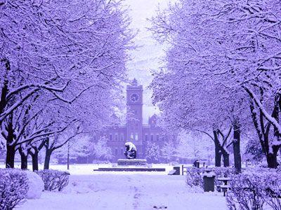 University of Montana , Missoula