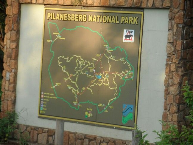Pilansberg Nature Reserve, North West Province...game drive