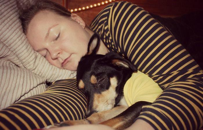 Warum es bei uns so still geworden ist und warum ich lieber einen Hund im Bett als keinen Hund im Leben hätte...
