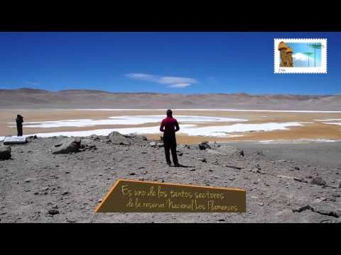 Salar de Pujsa, San Pedro de Atacama