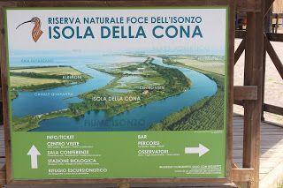 domani andiamo a.....: Riserva Naturale Foce dell'Isonzo