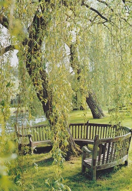 Simple and pure outdoor inspiration pics. LOVE this curved bench beneath a willow tree, and the other ideas in this post. #outdoors #garden #landscapingdesign #landscaping