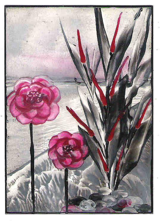 Rood-zwart rozen (traded)