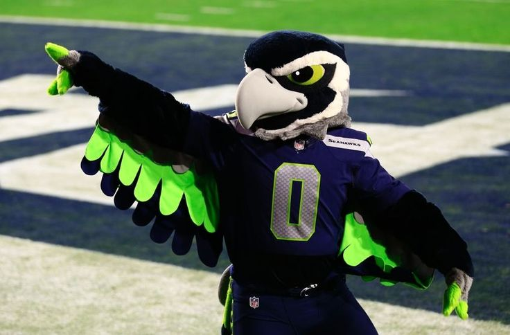 Blitz, the Seattle Seahawks mascot, is one of the cooler looking mascots in the NFL. Description from 12thmanrising.com. I searched for this on bing.com/images
