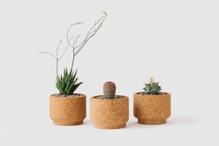 creative little flower pots