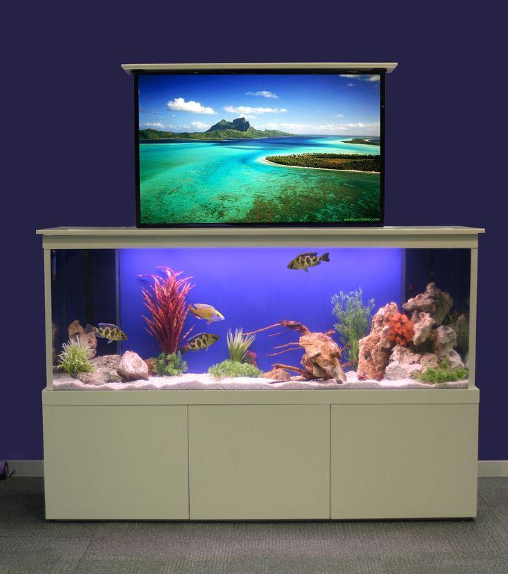 How To Design Aquarium In Home Photo