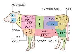 「牛肉 部位」の画像検索結果