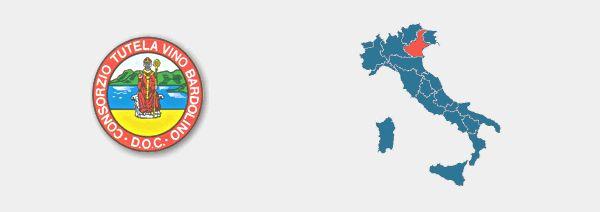 Bardolino Superiore DOCG Zona di produzione: tutto o in parte il territorio dei comuni di Bardolino, Garda, Lazise, Affi, Costermano, Cavaion, Torri del Benaco, Caprino, Rivoli Veronese, Pastrengo, Bussolengo, Sona, Sommacampagna, Castelnuovo, Peschiera, Valeggio sul Mincio in provincia di Verona. Questo vino prende il nome dall'omonimo paese situato sulle verdissime coste orientali del lago di Garda. Nella zona di produzione del vino Bardolino la vite viene coltivata fin dall'età del…