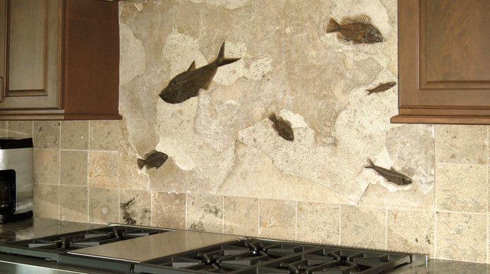 Kitchen And Bath Kitchen Backsplash With Real Fossils
