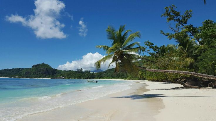 Traumhaft, Seychellen