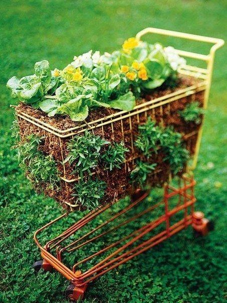 Old Cart Garden Garden Gardening Reuse Garden Decor Small