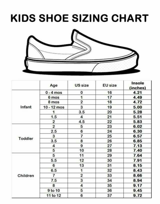 Everything  Pounds Shoe Size Guide