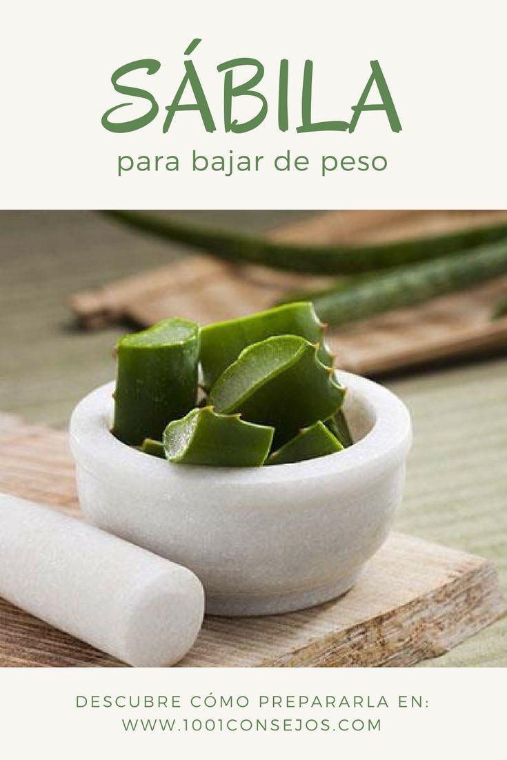 El aloe vera tiene muchas propiedades que te ayudarán a adelgazar.  Sábila Beneficios | Recetas Saludables | Dieta para Bajar de Peso | #adelgazar