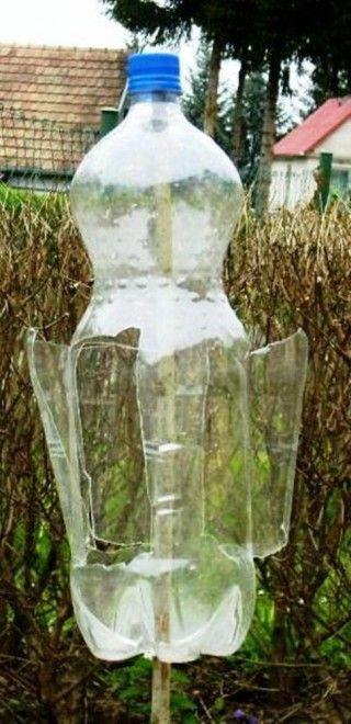 Volt vakond, nincs vakond – Íme a környezetbarát riasztó | Sokszínű vidék