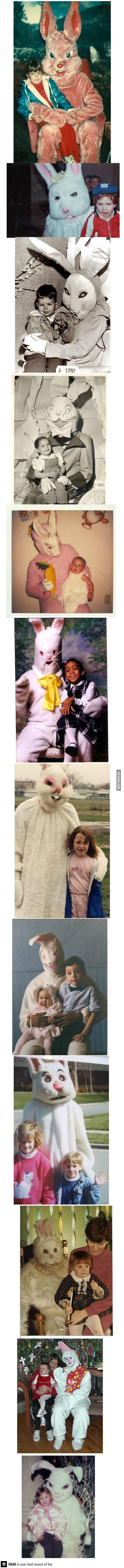 best 25 easter bunny pics ideas on pinterest easter bunny