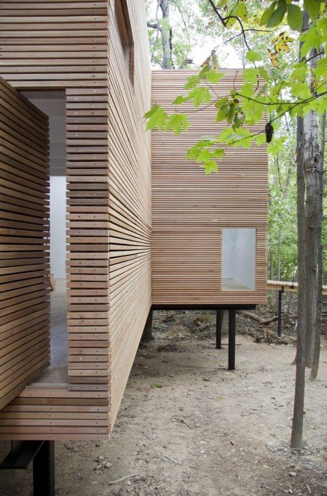 cedar rainscreen exterior / T Space - Steven Holl Architects