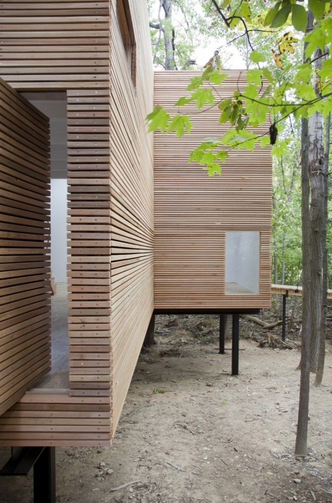 cedar rainscreen exterior / T Space - Steven Holl Architects