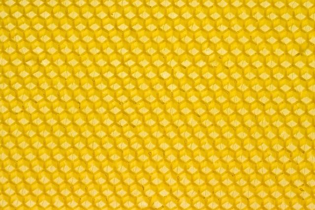 Free Image on Pixabay Beeswax, Honey, Honeybee