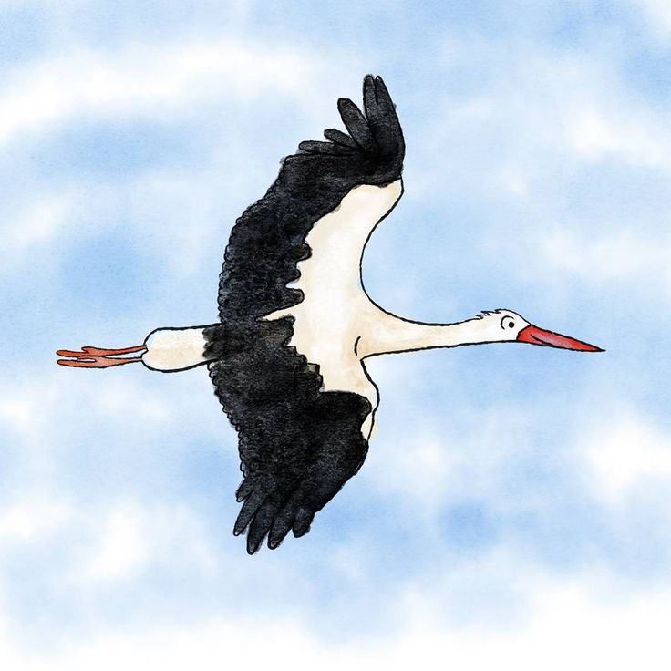 """Just a quick drawing of a stork :)"