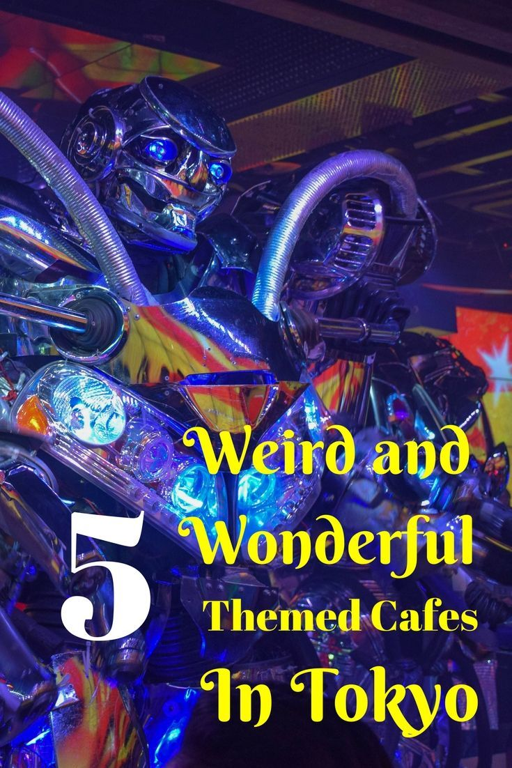 We had some weird and wonderful dining experiences during our trip to Tokyo. Check out our 5 favourite themed cafes in Tokyo   Ravenous Travellers Travel Blog