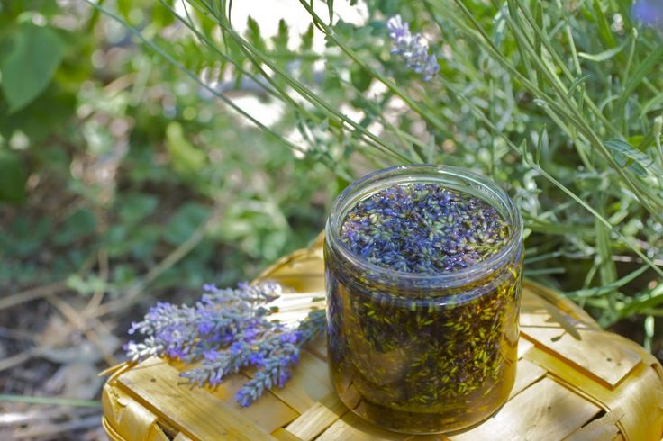 DIY Lavender infused Oil - Use to make your home smell wonderful~