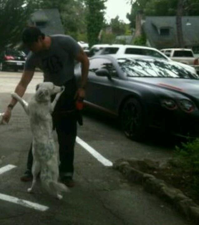 Zak Bagans Dog Gracie
