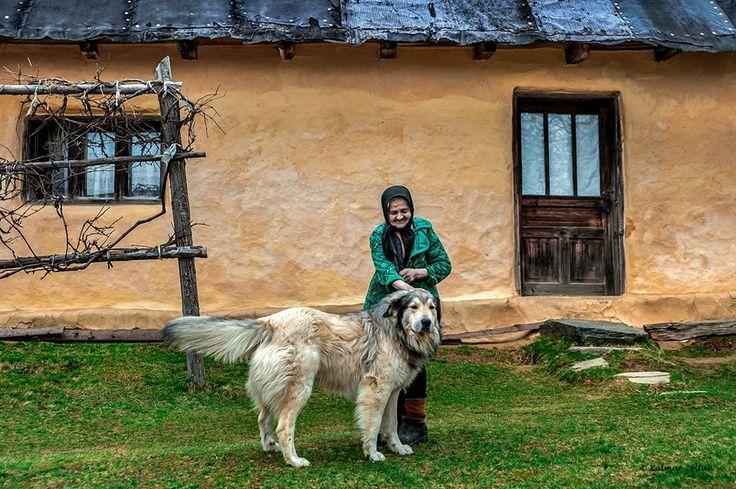 Kalmar Zoltan.....    azi dimineata o reintalnire placuta cu bunica Lenuta si Nero