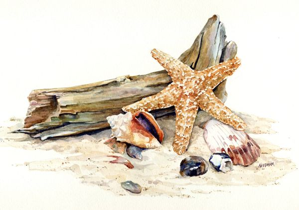 GOLD STAR, seascape watercolor by Thomas A Needham