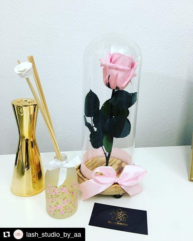 #supergift #criogenatedrose #pinkrose#contest @bloomeria.ro #thanks