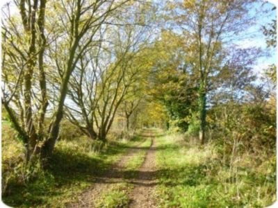 Marriotts Way - a 26 mile off-road trail which can be used by cyclists. It follows the route of two disused railway lines, running between Norwich and the market town of Aylsham, via Drayton, Lenwade, Cawston and Reepham. Some of it also forms part of SUSTRANS National Cycle Route No 1.