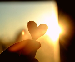 love the light