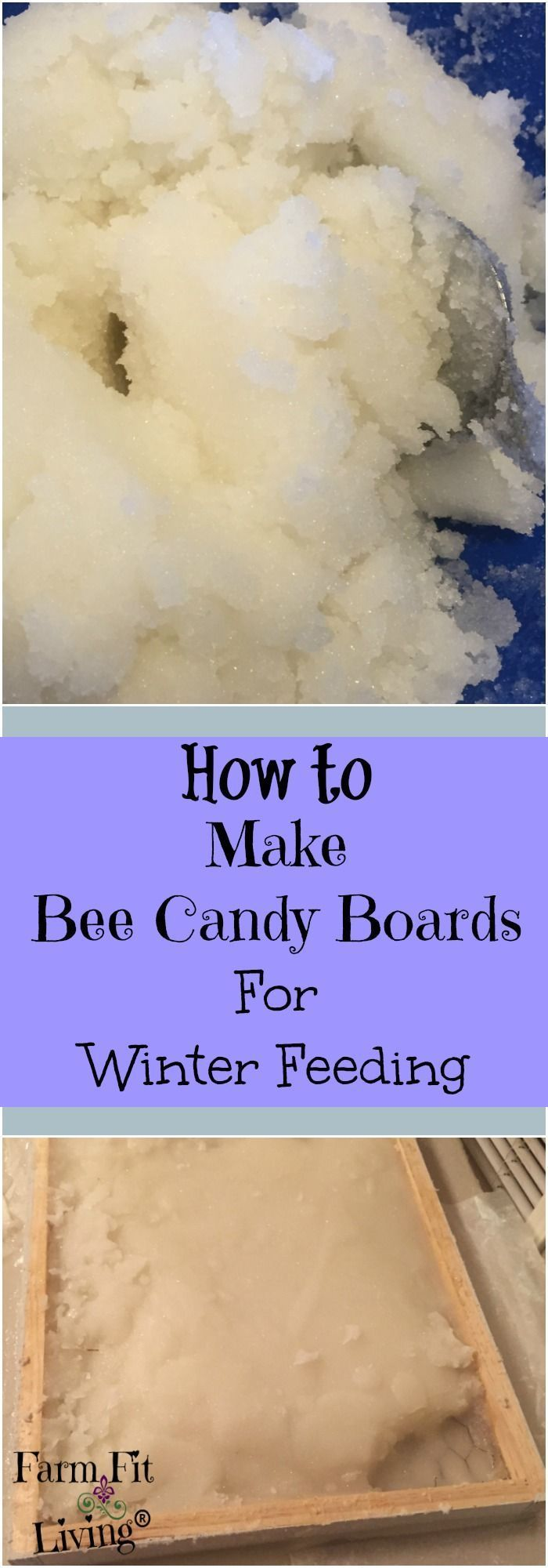 Winter Bee Feeding | Feeding Bees In Winter | Beekeeping DIY | How to Make Bee Candy Boards