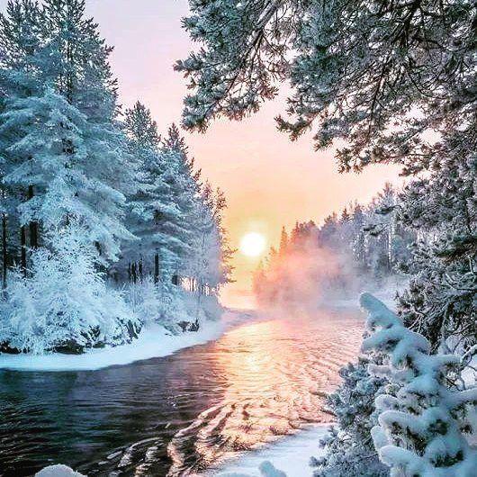 Lubicie zimowe krajobrazy? Pochwalicie się swoimi zimowymi widokami! #Winter #zima #wogrodzienajlepiej #snow #natura #piękno