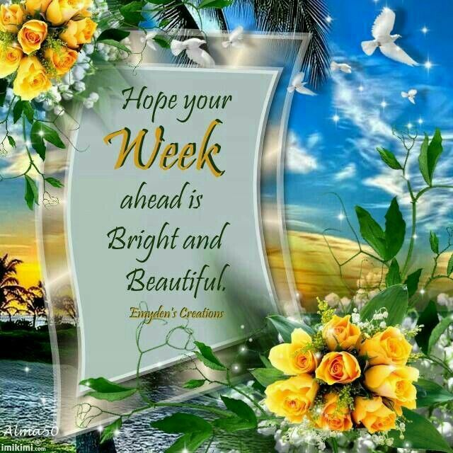 Image result for have a beautiful new week friend