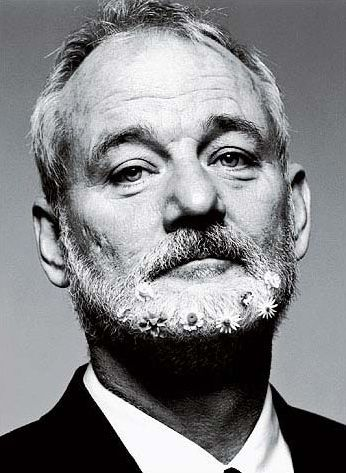 Bill Murray by willie