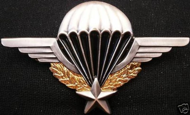 FRENCH ARMY SENIOR PARACHUTE QUAL BADGE FRANCE MEDAL