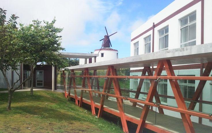 Apresentação da plataforma REDA na Escola Básica Integrada dos Biscoitos (12 de outubro de 2016).