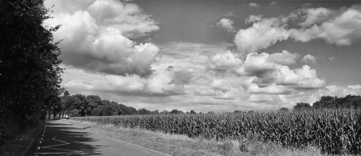 Clouds over a cornfield panorama monochrome - http://funsite.eu/2016/09/clouds-over-a-cornfield-panorama-monochrome/?utm_source=PN&utm_medium=Pinterest&utm_campaign=SNAP%2Bfrom%2BFunsite.eu