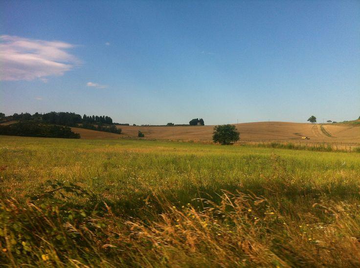 Agricampeggio Yuptala nel Terricciola, Toscana