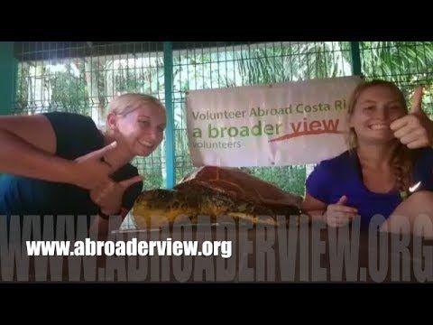 Volunteer Costa Rica Pacific Coast Review Nicole & Marissa Sea Turtles Conservation Program Website: https://www.abroaderview.org Facebook: https://www.facebook.com/abroad.volunteer Twitter: https://twitter.com/abroaderview Pinterest: https://www.pinterest.com/VolunteersABV/