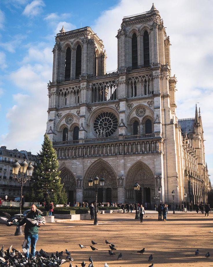 Cathedral Notre-Dame de Paris looking sort if festive #topeuropephoto #topparisphoto #topfrancephoto #gf_france #pariscartepostale #IgersParis #francevacations #parisjetaime #parismaville #igersfrance #ig_paris #pariscityvision #sky #super_france #visitlafrance #LOVES_FRANCE_ #paris #sunrise #Geo_plc #paris #hello_france #france4dreams #pariscartepostale #hello_worldpics #architecture #winter #MonHiveràParisRegion #notredamedeparis